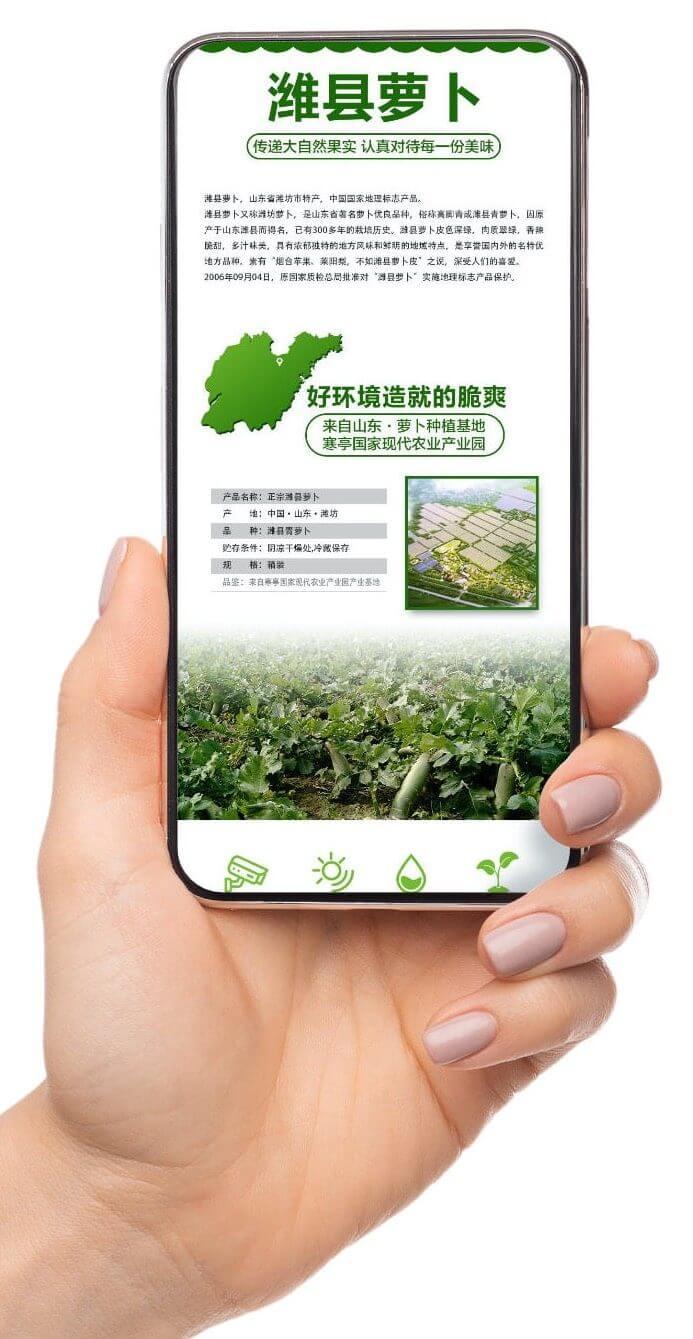 WeChat integration, food authentication for Runhui, China, Weixan radish, kezzler.